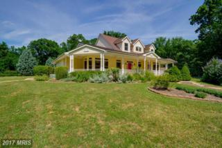 9493 Summer Breeze Road, Warrenton, VA 20186 (#FQ9897915) :: Pearson Smith Realty