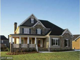 7351 Welsh Court, Middletown, MD 21769 (#FR9670193) :: Pearson Smith Realty