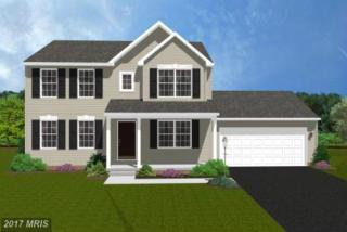 Wigville Road, Thurmont, MD 21788 (#FR9751767) :: Pearson Smith Realty