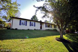 7913 Mount Pleasant Court E, Walkersville, MD 21793 (#FR9760368) :: LoCoMusings