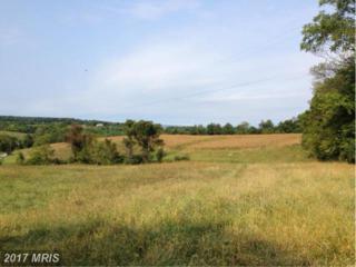 1 Whiskey Springs Road, Woodsboro, MD 21798 (#FR9774495) :: LoCoMusings