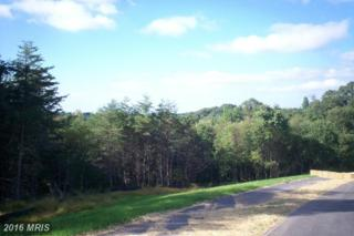 Lot 9 Autumn Crest Dr. South Drive, Mount Airy, MD 21771 (#FR9784365) :: Pearson Smith Realty