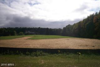 Lot 30 Autumn Crest Dr. South Drive, Mount Airy, MD 21771 (#FR9784379) :: Pearson Smith Realty