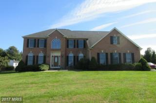 4811 Timber Drive, Mount Airy, MD 21771 (#FR9795112) :: Pearson Smith Realty
