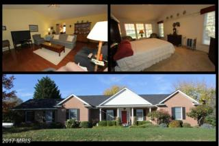 8201 Skipwith Drive, Frederick, MD 21702 (#FR9807391) :: LoCoMusings