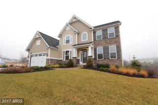 13503 Primavera Drive, Mount Airy, MD 21771 (#FR9822225) :: Pearson Smith Realty