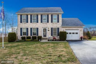 125 Redhaven Court, Thurmont, MD 21788 (#FR9830497) :: LoCoMusings