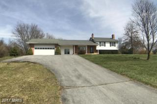 4231 Spring View Court, Jefferson, MD 21755 (#FR9833702) :: LoCoMusings
