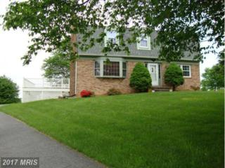 10206 Allview Drive, Frederick, MD 21701 (#FR9861834) :: Pearson Smith Realty