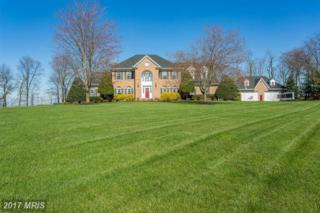 11830 Weller Hill Drive, Monrovia, MD 21770 (#FR9886282) :: LoCoMusings