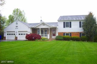 5740 Woodville Road, Mount Airy, MD 21771 (#FR9928133) :: Pearson Smith Realty