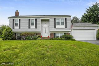 312 Spring Gate Court, Mount Airy, MD 21771 (#FR9933668) :: Pearson Smith Realty