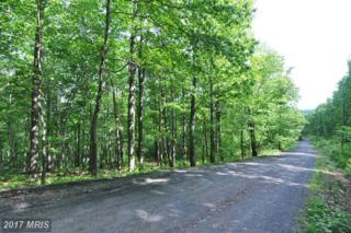 7-B Fall Run Road, Winchester, VA 22602 (#FV8646496) :: LoCoMusings