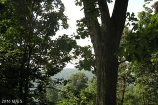LOT Trails End Drive, Star Tannery, VA 22654 (#FV8666620) :: Pearson Smith Realty