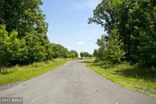 2 Huttle Road, Middletown, VA 22645 (#FV9626855) :: LoCoMusings