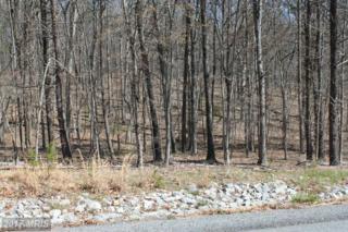32 Creola Drive, Winchester, VA 22603 (#FV9653920) :: Pearson Smith Realty