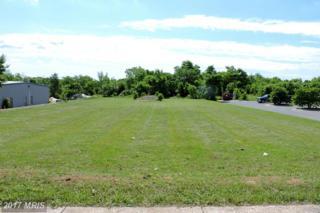 0 Baker Lane, Winchester, VA 22603 (#FV9674618) :: Pearson Smith Realty