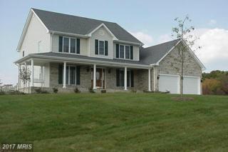 224-- 5 Mill Race Drive, Winchester, VA 22602 (#FV9711420) :: Pearson Smith Realty