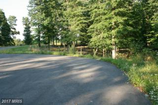 LOT 31 Comforter Lane, Clear Brook, VA 22624 (#FV9719458) :: Pearson Smith Realty