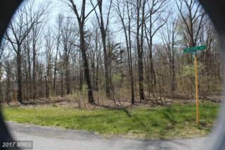 6 Traci's Way, Winchester, VA 22603 (#FV9730361) :: Pearson Smith Realty