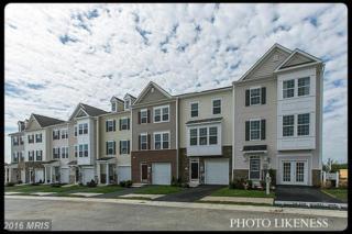 178 Schramm Loop, Stephens City, VA 22655 (#FV9757270) :: Pearson Smith Realty