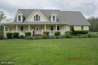 125 Skylar Lanes Way, Winchester, VA 22603 (#FV9780432) :: Pearson Smith Realty