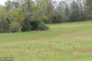LOT 2 Back Mountain Road, Winchester, VA 22602 (#FV9791317) :: Pearson Smith Realty