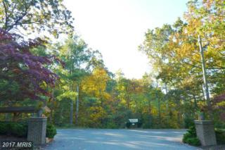 115 Lake Serene Drive, Winchester, VA 22603 (#FV9791700) :: LoCoMusings