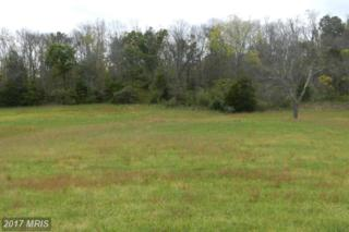 LOT 3 Back Mountain Road, Winchester, VA 22602 (#FV9791715) :: Pearson Smith Realty