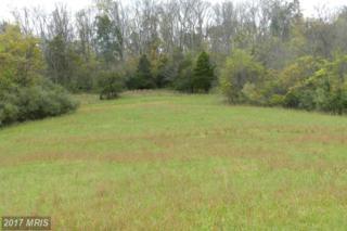 LOT 5 Back Mountain Road, Winchester, VA 22602 (#FV9791958) :: Pearson Smith Realty