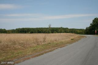 LOT 20 Christo Rey Drive, Clear Brook, VA 22624 (#FV9792774) :: Pearson Smith Realty