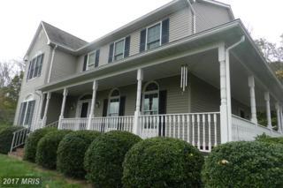 3538 Back Mountain Road, Winchester, VA 22602 (#FV9794256) :: Pearson Smith Realty