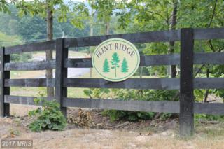 0-F Plow Run Lane, Winchester, VA 22602 (#FV9839754) :: LoCoMusings