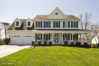 105 Lucy Long Court, Stephens City, VA 22655 (#FV9907380) :: Pearson Smith Realty