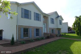 100 Rosie Court, Stephens City, VA 22655 (#FV9913005) :: Pearson Smith Realty
