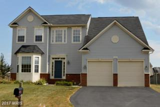 108 Ayrshire Court, Stephens City, VA 22655 (#FV9917631) :: Pearson Smith Realty