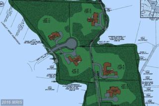 Bull Neck Lot 4, Mclean, VA 22102 (#FX8739383) :: Pearson Smith Realty