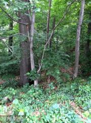 3435 Glen Carlyn Drive, Falls Church, VA 22041 (#FX9713897) :: Pearson Smith Realty