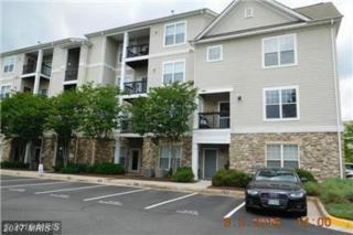 13397 Connor Drive L, Centreville, VA 20120 (#FX9763700) :: LoCoMusings