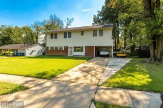 7411 Hogarth Street, Springfield, VA 22151 (#FX9781328) :: Pearson Smith Realty
