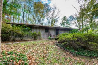 1025 Millwood Road, Great Falls, VA 22066 (#FX9800426) :: Pearson Smith Realty