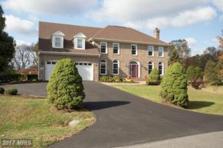 5780 Robeys Meadow Lane, Fairfax, VA 22030 (#FX9811825) :: LoCoMusings