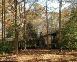 12118 Beaver Creek Road, Clifton, VA 20124 (#FX9814093) :: Pearson Smith Realty