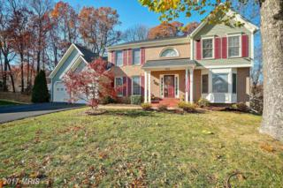 14519 Flag Staff Court, Centreville, VA 20121 (#FX9816622) :: Pearson Smith Realty