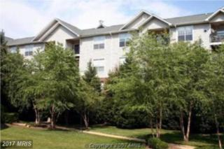 1571 Spring Gate Drive #6111, Mclean, VA 22102 (#FX9816743) :: Pearson Smith Realty