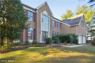 11711 Crippen Court, Great Falls, VA 22066 (#FX9823986) :: LoCoMusings