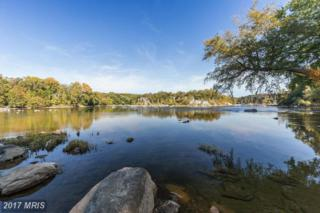 703 Potomac Knolls Drive, Mclean, VA 22102 (#FX9824807) :: Pearson Smith Realty