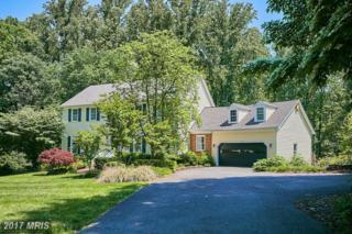 743 Kentland Drive, Great Falls, VA 22066 (#FX9833831) :: Pearson Smith Realty