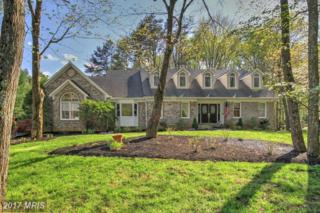 9715 Lindsay Blake Lane, Great Falls, VA 22066 (#FX9858814) :: Pearson Smith Realty