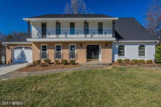 4920 Hogans Lake Place, Annandale, VA 22003 (#FX9860887) :: Pearson Smith Realty